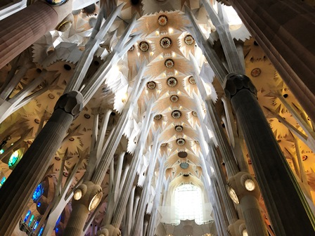 Bosque interior de la Sagrada Familia