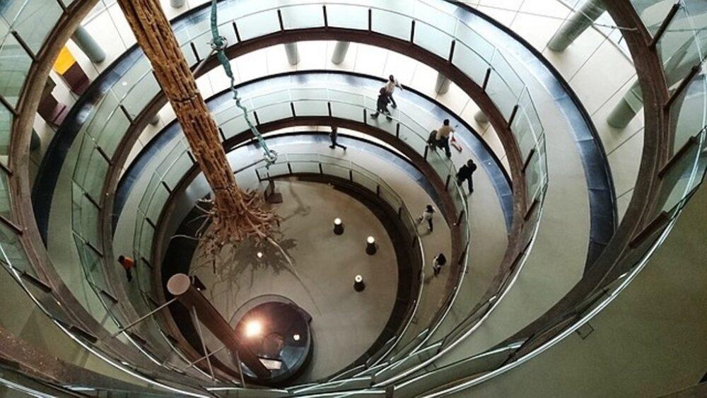 Rampa helicoidal y árbol gigante en el CosmoCaixa Barcelona