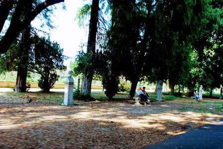 Relajarse en el Parque de Villa Borghese
