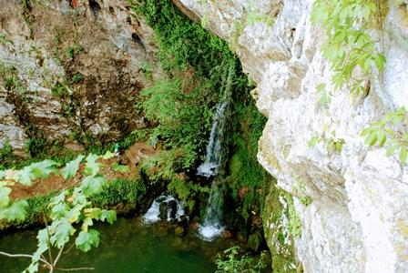 Fuente del Matrimonio en el Santuario de Covadonga