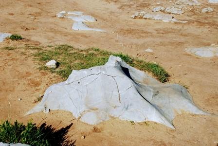 Piedras con formas de animales en los Bufones de Pría