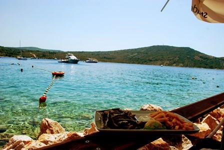 Las ricas sardinas que nos comimos en Primosten junto al mar en Primosten (Croacia)