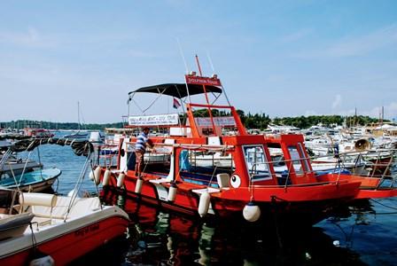 Estupendo paseo en barco por el archipiélago de Rovinj (Croacia)